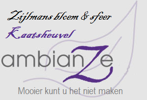 ambiance-website.png